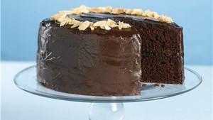 BestEver Chocolate Fudge Layer Cake Kim Copy Me That