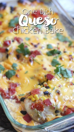 one dish queso chicken bake easy dinner recipe bungirl copy me