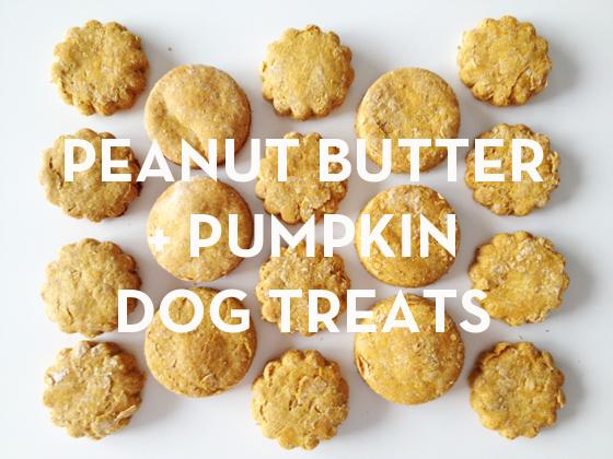 All Natural Peanut Butter Pumpkin Dog Treats