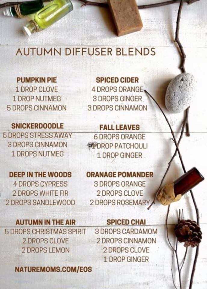 fall diffuser blends young living brandi bette copy me that