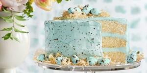 speckled malted coconut cake debbie fenner copy me that